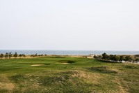 Tiger Beach, Shandong
