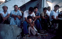 Palestinians rounded up by Israeli Army, Sabra - Shatilla
